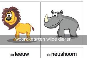 woordkaarten wilde dieren - Lespakket